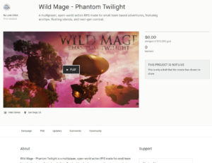 Wild Mage Video Game
